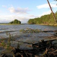 Объское водохранилище :: Kamyshlov Victor