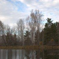 Осень. :: Андрей В.
