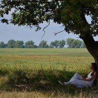 Прислушайся к природе... :: Мария Кондрашова