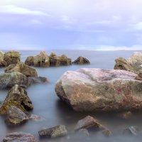 Финский залив :: Андрей Павлов