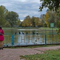 Любовь и голуби. :: Sergey Serebrykov