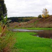 Зеленая осень :: Олеся