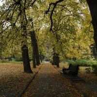 Осень :: Natalia Яз