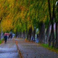 Осень 24 сентября :: Валентина Потулова