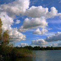 зарисовки на тему   озеро :: Александр Есликов
