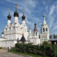 Но хочет взмыть под облака Души потерянной молитва :: Ирина Данилова