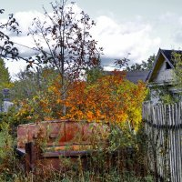 Осень на даче. :: Sergey Serebrykov