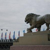 Питерский лев :: demyanikita