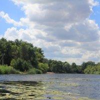 Река Икорец в своей широкой части :: Gen Vel