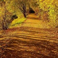 Пробраться в Осень :: олег свирский
