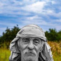 Старость... :: Александр Посошенко