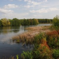 Лесная гладь осеннего пруда. :: Victor Klyuchev