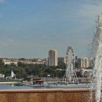 Вид от фонтана. :: Михаил Николаев