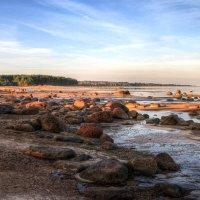 Гранитный берег :: Cергей Кочнев