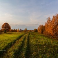 Осень :: Александр Синдерёв
