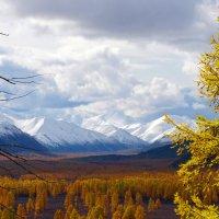 Тальская долина :: Константин Есипов