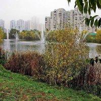 Городская осень... :: Petr Vinogradov