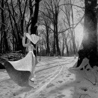 В лесу :: irina Schwarzer