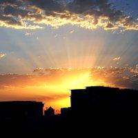 Новый день :: Ахмед Овезмухаммедов