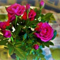 Милые Веры,Нади,Любы и Сони!С праздником Вас!Счастья и Любви :: Sergey Gordoff