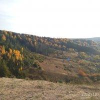 Солнечный день октября. :: Алена
