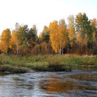 река медведица :: александр пеньков