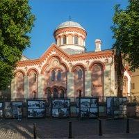 Фотовыставка на улице Вильнюса :: Shapiro Svetlana