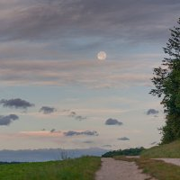 по дороги с облоками :: vladimir