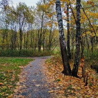 Вам всё еще не нравится октябрь? :: Андрей Лукьянов