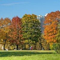 Осень, осень ... :: Kirill