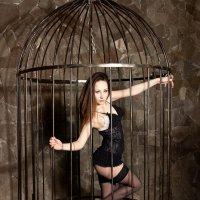 Девушка в клетке :: Антон Вораевич