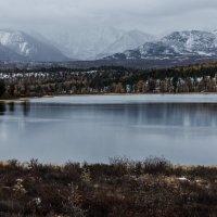 Горный Алтай. Озеро Киделью (Озеро с пастбищами) :: Андрей К