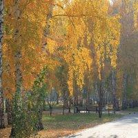 В городском парке :: Горкун Ольга Николаевна