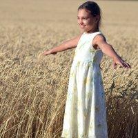 Пшеница созрела :: Ростислав