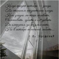 Октябрь за моим окном 2020 :: Юрий Яньков