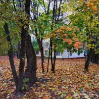Осень в Москве :: Андрей Лукьянов