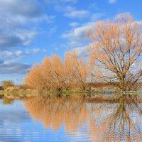 Весенний разлив :: евгения