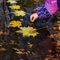 Осенняя дорожка :: Татьяна Соколова
