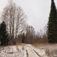 Первый снег :: Дмитрий Иванов