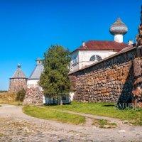 Башни крепости :: Юлия Батурина