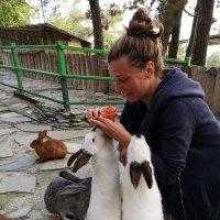 Встреча с кроликами :: Ольга Довженко