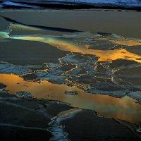 Золото на льду. :: игорь кио
