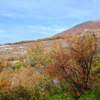 Пятигорск. Гора Машук. Осень :: Николай Николенко