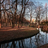 В осеннем парке... :: Сергей Кичигин