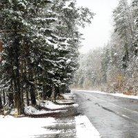 Первый снег. :: Надежда