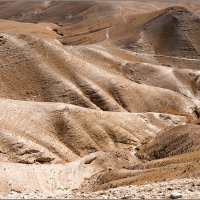 Иудейская пустыня. Израиль :: Lmark