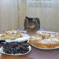 День рожденья,праздник детства... :: Андрей Хлопонин