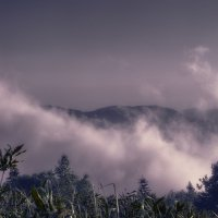 Облако утишение гор :: Роман Попов