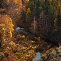 Осень в Зауралье :: Наталья Соболева
