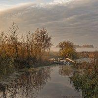 Тот берег, где живут туманы... :: Наташа Баранова